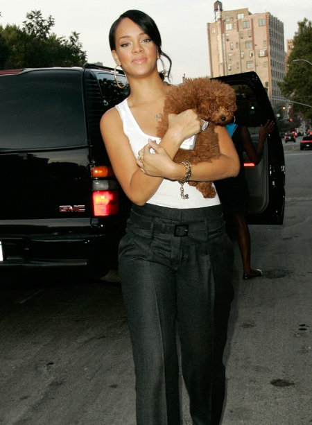 rihanna-high-waist-pants.jpg