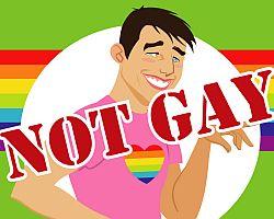 not-gay.jpg
