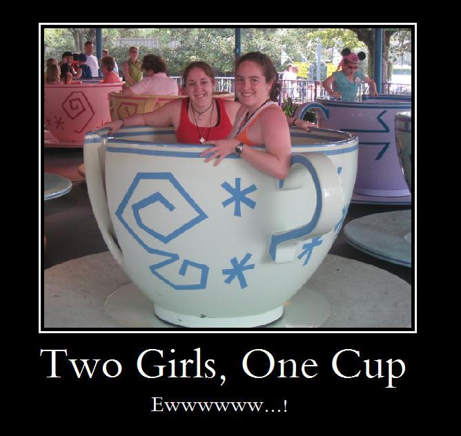 http://usversusthem.files.wordpress.com/2008/06/2girls1cup.jpg